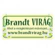 Brandt Virág - Újpest