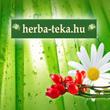 Herbatéka - Tesco Extra, Váci út