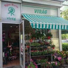 Roza Porta Virágüzlet - Stop.Shop. Újpest (Forrás: csodanoveny.com)